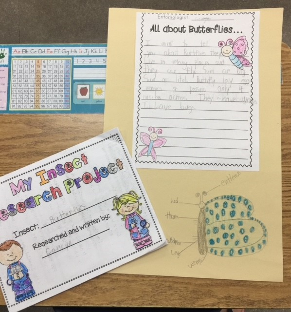 Kindergarten Research Projects