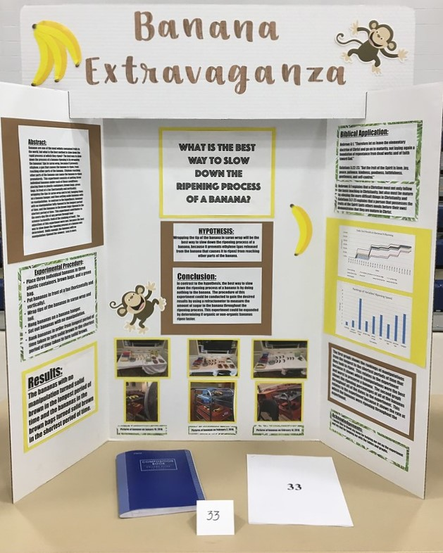 Interesting Discoveries from the 2018 Science Fair